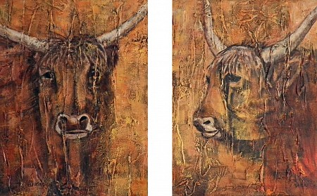 Schotse hooglanders painted by Vera Wilting