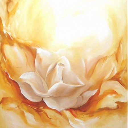 White rose painted by Elra Heus