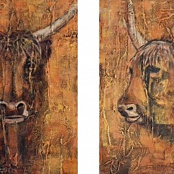 Schotse hooglanders painted by