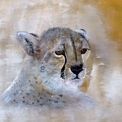 Cheeta painted by
