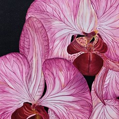 Orchid painted by